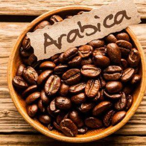 kopi-arabica